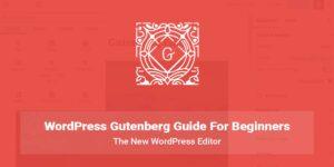 WordPress Gutenberg Guide for Beginners