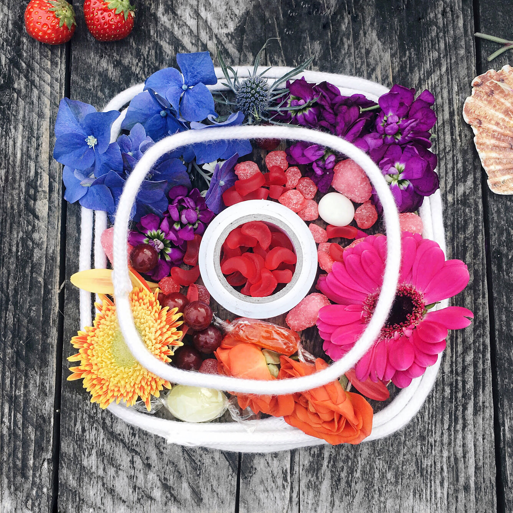 Read more about the article Effective Instagram Strategies for Your Small Business